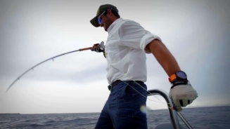 Long and fierce - The strikes when fishing for big saltwater fisk like GT\'s, billfish, tarpon and such can seem quite manic
