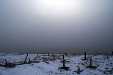 Winter haze - The sun is out there somewhere
