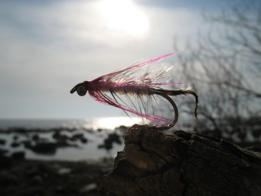 Polar Magnus - a good fly during winter.