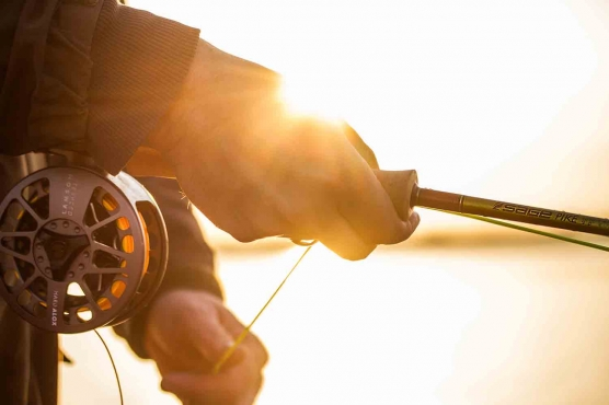 Large arbor reel in the sun