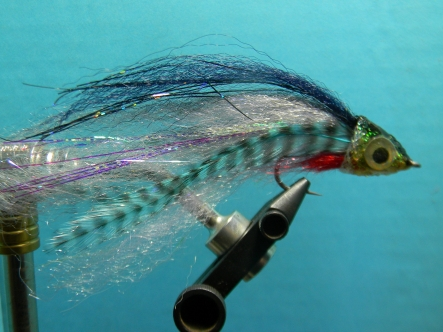 A deceiver style fly