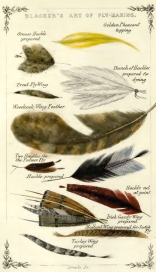 Plate of feathers