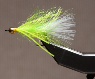 Chartreuse Lynx's Whisker