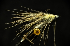 Spey hackle shrimp.