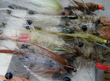 Coastal seatrout fly patch.