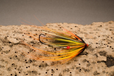 Yellow Spey Intruder