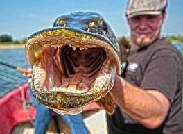 Pikes have lots of teeth!