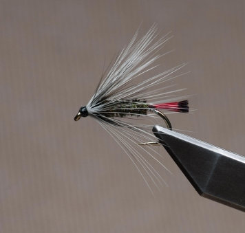Hutch's Pennell for sea run trout