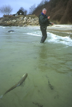 Joergen walking in a trout
