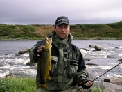 Nice golden trout -