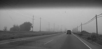 Foggy ride - We did a lot of car driving and had a lot of fog. This picture combines both.