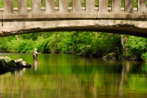 The Bridge Pool.  Ridley Creek, PA -