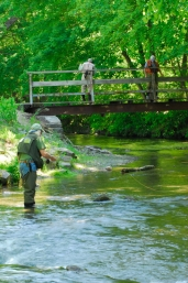 Anglers looking for trout holding spots from bridge.  Mill Race at the Yellow Breeches, PA -