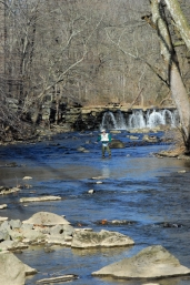 Early season fishing.  Ridley Creek, PA -