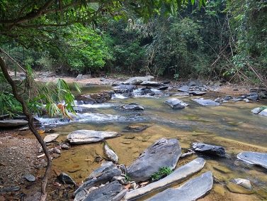 Rushing through tehe jungle - The rivers var greatly in size, structure and speed