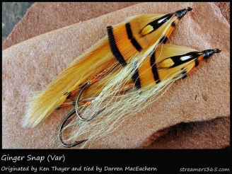 #95 Ginger Snap - These flies were tied by Darren MacEachern himself