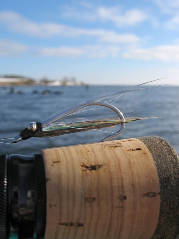 Skinny minnow - The Clouser Minnow can be tied pretty skinny and still work well