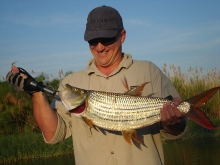 Tigerfish can bring about smiles -