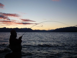 Perfect - setting sun, bent rod