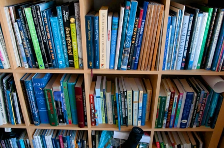 A few books - Part of what I see when I look at my bookshelves