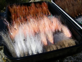 Pigsty - The Mini Pigs in pink and white mingle with Ken\'s other seatrout flies