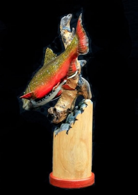 Brook trout from behind -