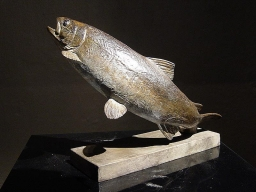 Bronze of a trout nymphing -