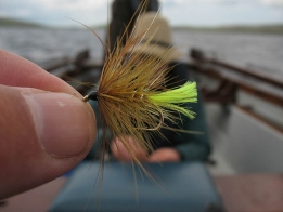 Top dropper - The Irish and the English often use a large bushy fly as the top dropper. This is an Olive Bumble.
