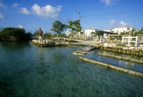 Canal fishing - It was possible to wade this canal in San Pedro, Ambergris Caye, but it made much more sense to stay elevated and dry