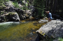 First Fish! - Shane Murphy hooks into his very first cutthroat fish from a crystal clear pool on North Inlet Creek.
