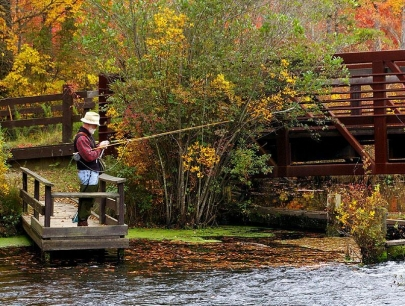 Fishing in New York Gallery - Upper Bridge, Connetquot, Long Island, NY