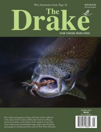 Drake cover - Jonas\' frog imaged landed a well deserved cover on The Drake