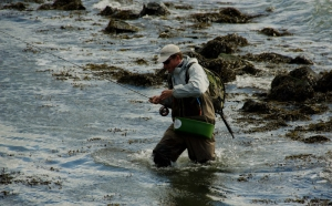 Rough conditions - The bass like rocks and jetties, so the angler must seek out these sometimes troublesome locations