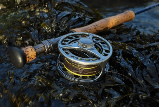 Gear in the weed - Saltwater, rocks and strong fish calls for strong gear