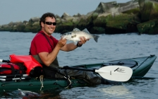 Kayak fishing - The modern sea kayaks offer stability and comfort