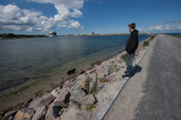 Exploring the water - Most of Divus\' contact with water is just ankle deep, here on a local pier in Copenhagen