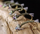 Nymphs up close -