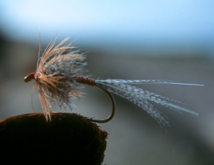 The original - Klympen as it looked from Henning's vice: large, long tail with flash, red tying thread.