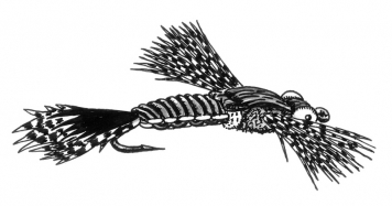 Finished fly - The result is a fly of a relatively low profile seeing it sideways, and wider if it is viewed from above.  The legs that aim slightly up, give it an appearance of activity, and they work as a level when the fly is in the water.