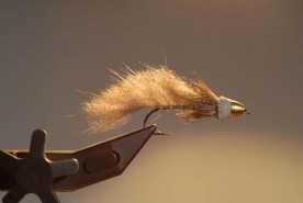 With a gentle fill - Using a flash or a reflector can soften the shadows on the front side of a backlit fly
