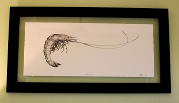 "Floating in glass - A drawing framed ""floating\"" between two pieces of glass"
