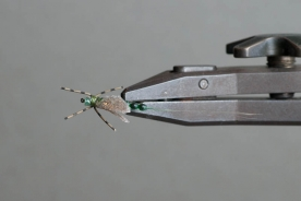 Mayfly, top view - Tied by David Cowardin