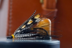 Glenn Grant - This salmon fly is tied with a yellow GP saddle feather as the tail