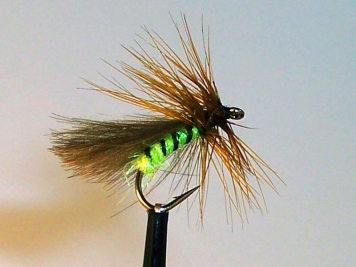The Grannom - A sedge or caddis with a bright, green body