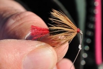 A larger version - Meatier and with a large front hackle, but still a Red Tag