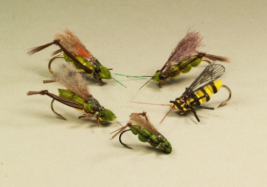 Bugs - A couple of hoppers and other insects made with bug-bodies in different sizes. Real fun to work with.