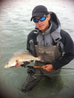 Redfish -