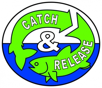 English Catch and Release logo -