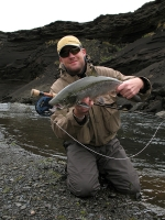 A very typical Icelandic salmon - They are not 20 lbs. beasts, but average around 6-8 lbs.