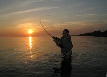 Sea trout, Persson and sunset -